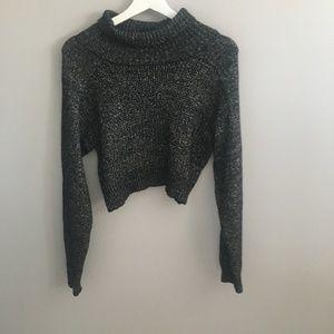 Zara Knit Turtleneck Cropped Sweater